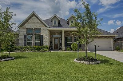 Rosenberg Single Family Home For Sale: 9518 Wheatfield Lane