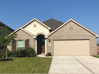 League City Single Family Home For Sale: 1605 Nacogdoches Valley Drive