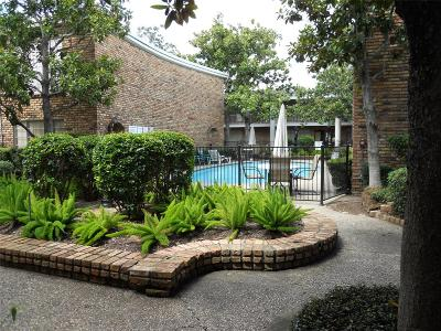 Houston TX Condo/Townhouse For Sale: $139,500