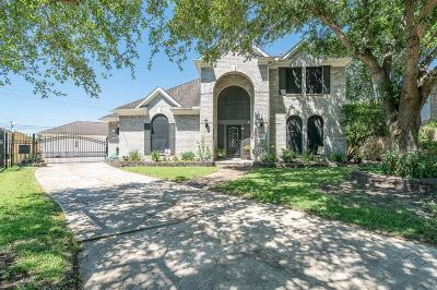 Pearland Single Family Home For Sale: 6101 Raintree Drive