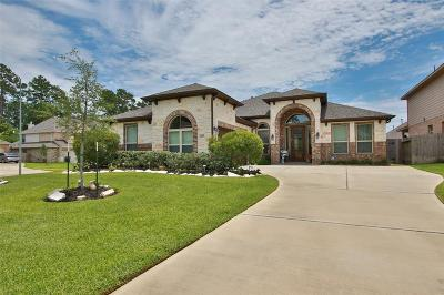Tomball Single Family Home For Sale: 10707 Sir Alex Drive