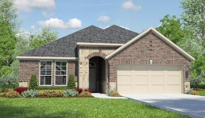Katy Single Family Home For Sale: 28707 Forest Pass