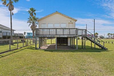 Surfside Beach Single Family Home For Sale: 1018 Fort Velasco Drive