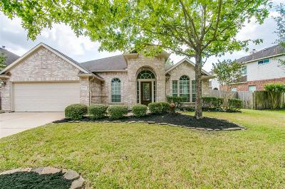 Houston Single Family Home For Sale: 10302 Cobalt Falls Drive