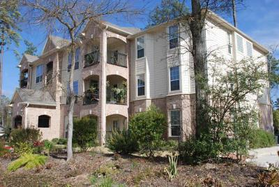 Th Woodands, The Wodlands, The Woodlandjs, The Woodlands, The Woolands Rental For Rent: 6607 Lake Woodlands Drive #412