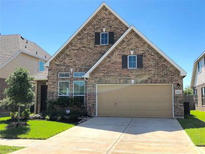Spring Single Family Home For Sale: 21523 Rainfall Park Drive