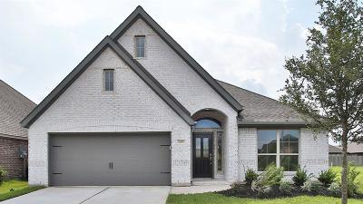 Pearland Single Family Home For Sale: 3202 Primrose Canyon Lane
