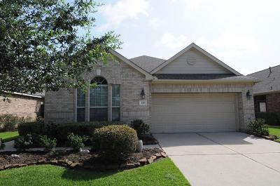 Pearland Single Family Home For Sale: 1217 Modena Drive