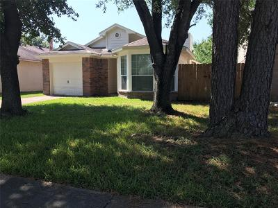 Cypress Single Family Home For Sale: 19743 Swan Valley Drive