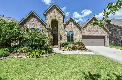 Friendswood Single Family Home For Sale: 1508 Dusty Rose Court
