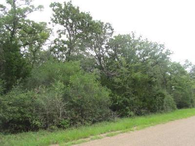 Fayette County Farm & Ranch For Sale: 0000 E Old Lockhart Road E