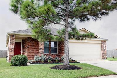 Katy Single Family Home For Sale: 21747 Stoney Bluff Lane