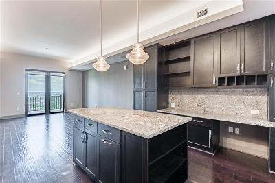 Harris County Rental For Rent: 4 S Chelsea Boulevard #1716