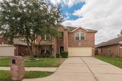 Houston Single Family Home For Sale: 12126 Falls Coppice Lane Lane