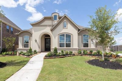Katy Single Family Home For Sale: 27506 Blackstone Canyon Lane