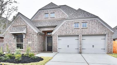 Pearland Single Family Home For Sale: 2904 Parkstone Field Lane