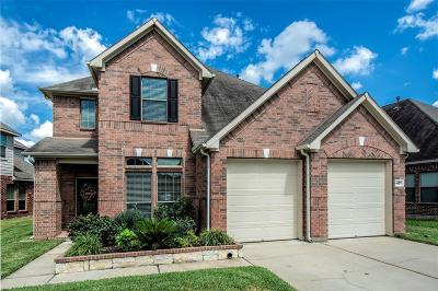 Katy Single Family Home For Sale: 4607 Ferndale Meadows Drive