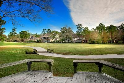 The Woodlands Single Family Home For Sale: 58 N Timber Top Drive