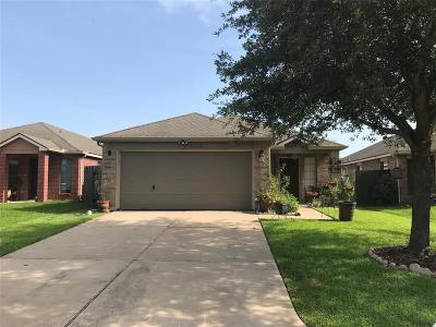 Katy Single Family Home For Sale: 18915 N Lyford Drive