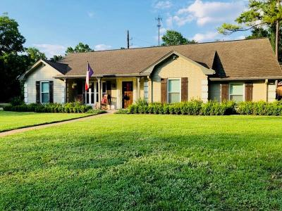 Houston Single Family Home For Sale: 18050 Bambriar Drive