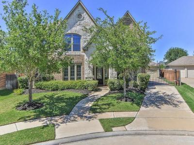Katy Single Family Home For Sale: 25602 Durango Falls Lane