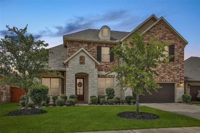 Galveston County, Harris County Single Family Home For Sale: 20114 Cascading Falls Boulevard