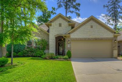 Montgomery Single Family Home For Sale: 119 Winslow Hill Place