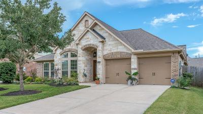 Shadow Creek Ranch Single Family Home For Sale: 14006 Lake Hollow Drive