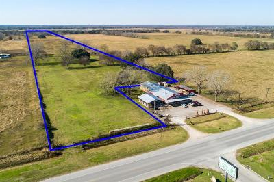 Brazoria Residential Lots & Land For Sale: S Fm 521 S
