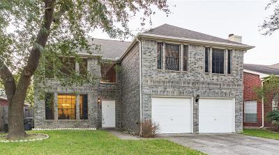 Houston Single Family Home For Sale: 8023 Oceanside Drive