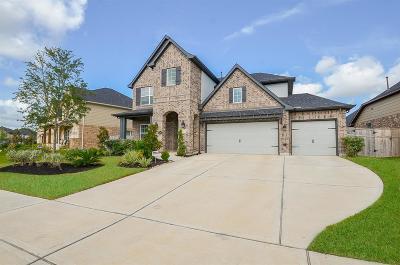 Fulshear Single Family Home For Sale: 28114 Long Mill Lane