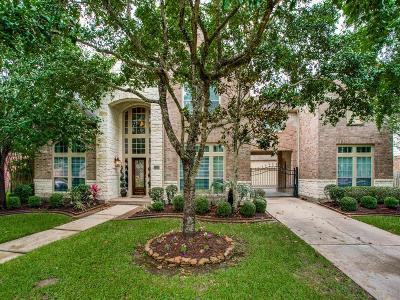 Friendswood Single Family Home For Sale: 3338 Duke Lane