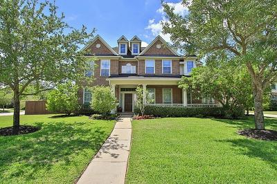 Sugar Land Single Family Home For Sale: 7003 Eden Cove Court