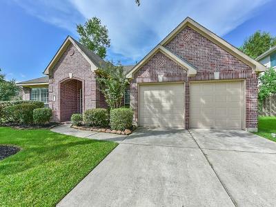 Houston Single Family Home For Sale: 15003 Cozy Hollow Lane