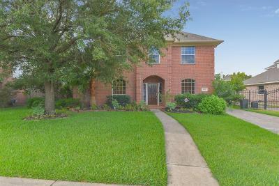 Houston Single Family Home For Sale: 9511 Stone Castle Drive