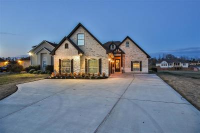Montgomery Single Family Home For Sale: 18843 Serene Water Dr