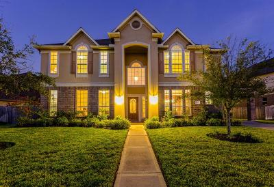 Pearland Single Family Home For Sale: 3405 Leafstone Lane