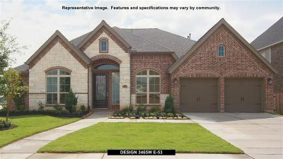 New Caney Single Family Home For Sale: 23526 Vernazza Drive