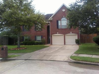 Friendswood Single Family Home For Sale: 3039 Rolling Fog Drive
