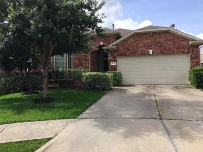 Spring Single Family Home For Sale: 9619 Edgeloch Drive