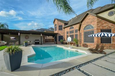 Pearland Single Family Home For Sale: 2226 Long Cove Court
