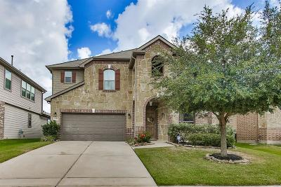 Single Family Home For Sale: 16414 Williamstown Drive