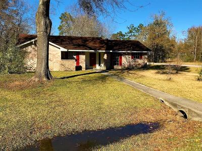 Spring Single Family Home For Sale: 25127 Wilderness Road