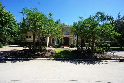 Houston Single Family Home For Sale: 807 Marywood Chase