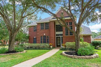 Houston Single Family Home For Sale: 1307 Blackthorne Drive