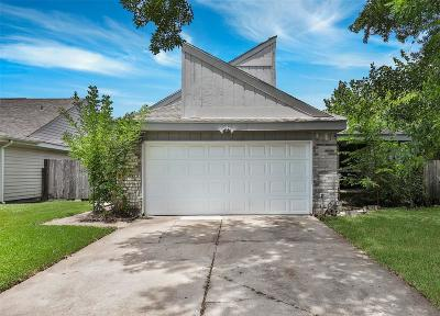 Houston Single Family Home For Sale: 13838 Beech Hollow Lane