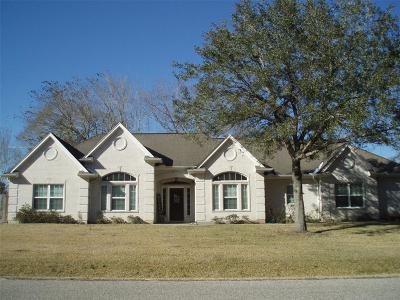 Alvin Single Family Home For Sale: 71 E County Road 136