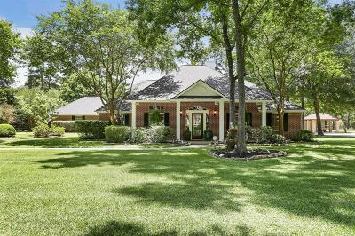 Conroe Single Family Home For Sale: 15071 Runnymede Street