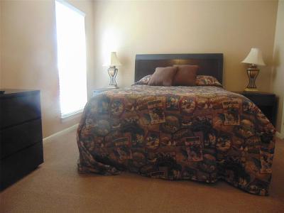 Galveston Rental For Rent: 3506 Cove View Boulevard #1703