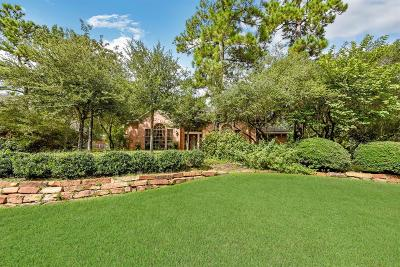 The Woodlands Single Family Home For Sale: 2 Candlenut Place
